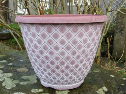 Terracotta with White wash
